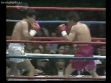 1989-12-16 Julio Cesar Chavez vs Alberto Cortes (WBC Super Lightweight Title)