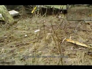 Расстрел выживших после авиакатастрофы польской делигации под Смоленском (ненормативная лексика)