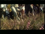 Mouse On Mars - Diskdusk (1999)