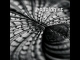 Echologist - Swell (Modular Take)