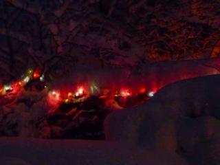 Лейла- В полях под снегом и дождём (Р. Бёрнс)
