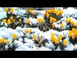 «Дв» под музыку Смоки Мо feat. Mezza Morta, Миша Крупин, Crash, Big D, Bess (V - Style) ,Big (V-Style) & 5 Плюх - Темные Очки (Пришла Весна). Picrolla