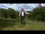 BBC. Мир природы. Обитатели пробкового леса / BBC. Natural World. Creatures of the Cork Forest (2008)