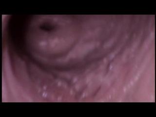 Секс изнутри картинки фото 725-122