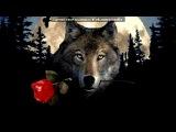 «ФотоМагия» под музыку  ПЕСНЯ ПРО ЖИЗНЬ И ПРО ЛЮБОВЬ - Я ненавижу любовь.... Picrolla