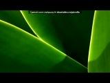 «МАКРО» под музыку селин дион(просто музыка без слов) - песня из титаника)). Picrolla