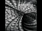 Echologist - Junkyard