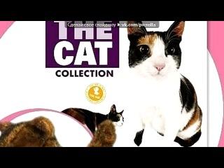 «the cat collection» под музыку Вода - Мы стали старше, мама, Знаешь, что дальше, мама. Асфальт под ногами нашими, Над головой сажа. Если ангелы, то падшие, Если дьяволы мы, то настоящие. Мне жаль, мама. Врагами худшими друзья стали самые, Самые лучшие.. Picrolla