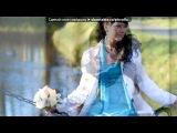 «НАША СВАДЬБА 16.12.11» под музыку СБОРКА - Свадебные песни. Picrolla