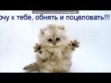 «Красивые Фото • fotiko.ru» под музыку муа=* - ♥...Прости меня за все!! прости что разочаровала тебя ..ты мне оч дорога..моя лучшая подруга...Катя зайка, извини я люблю Будь счастлива моя любимая и лучшая подруга Пройдут года,но НЕ ЗАБУДЕМ мы друг друга = *♥. Picrolla