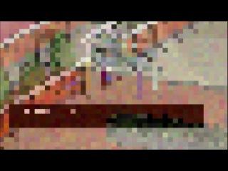 Гинтама [ТВ 2] / Gintama [TV 2] 28 Серия (229 серия)