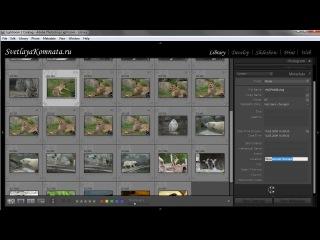 Видеоурок 014. Работа с метаданными в Photoshop Lightroom 2 Отзывов (24)  Здесь рассказано о том, что такое метаданные, какие по