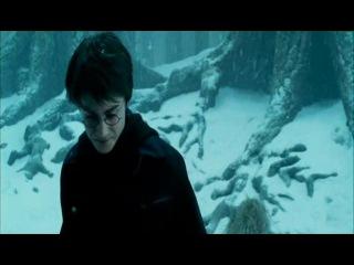 Гарри Поттер и Зек из Азкабана [Отрывок #1] [Перевод Гоблина от Gremlin]