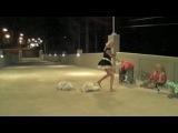 Трахальщики мусорных бачков / Trash Humpers (2009) / Хармони Карин / Harmony Korine