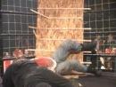 Lobo vs. Zandig - [CZW - Cage Of Death 4][14.12.2002]