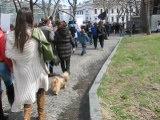 Марш в защиту бездомных животных 31.03.2012 г.!