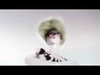 Stunning music video for PLMS_IV_D.created by japanese visual artist Daihei Shibata.