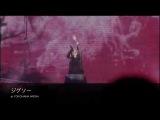 Acid Black Cherry _ 「2010 Live Rebirth」ダイジェスト映像