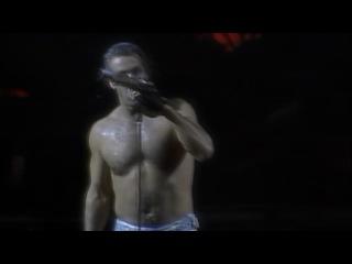 Rammstein - Wolt Ihr Das Bett In Flammen Sehen (Live Aus Berlin)