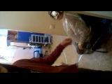 Клиентка сидит с краской на ресницах,а мы ей делаееем воооот тааак!!  ( Дима Шелест )! как Алена Пискун