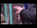 1 фильм проекта Общее дело Чижик-пыжик, где ты был Пьющие дети.