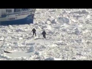Зверобойный промысел на Белом море