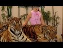 «таиланд» под музыку Inna - 10 Minutes. Picrolla