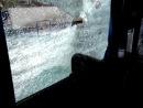 Выезд Спартак  - Зенит атака на наш автобус