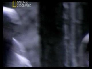 National Geographic.Тайны истории: Король Артур