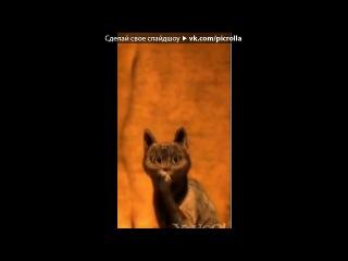 «Кот в Сапогах» под музыку Franky -  Just Run Away (OST Закрытая школа 2 сезон титры). Picrolla