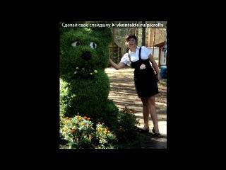 «наше венчание 12 августа 2011 года!!!!!!» под музыку Ирина Круг и Виктор Королёв - Букет из белых роз... Picrolla