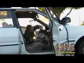 Страна Банд: Расовые Войны / Gangland: Race Wars (2009)