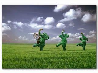 Живые зеленые фигуры для сада - топиари.