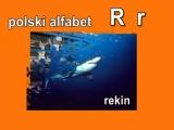 POLSKI ALFABET (Unit #32)