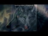«картинки волки» под музыку Скилет - монстр. Picrolla