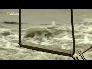 National Geographic - NAT GEO WILD - ''Острова - ''Фиджи''''