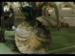 Мультфильм. Сказки Чуковского. Бибигон. 1981