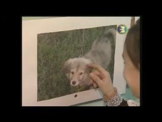 Моя дочка стала звездой Башкирского Спутникового телеканала, Ролик из детской телепередачи Гора новостей от студии Тамыр