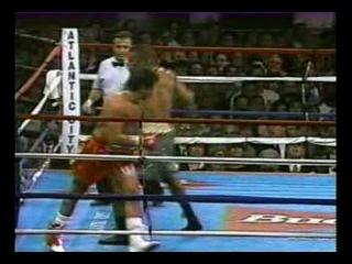 1995 06 24 Рой Джонс vs Винни Пазиенца