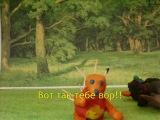 Пластилиновый мультфильм про ёжика и медведя (моё первое творение)