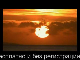 Реклама Torrentino-Torrent.ru