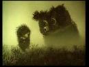 Ёжик в тумане (псих)