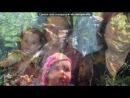 «Кіруся-кукуся» под музыку ✿ܓ Юлия михальчик✿ܓ - (...Птица...) (песенка про Киру Дагу) (про меня свойственно).