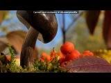 Природа под музыку Kenio Fuke - Soul. Picrolla