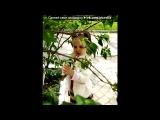 Кристик под музыку FC Kahuna - Hayling (CSI Miami OST). Picrolla