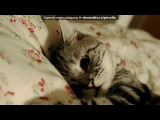 Фотометки.ру вдохновение искать тут под музыку Веселая Музяка - Ну реально веселая)))). Picrolla