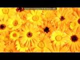 «Розы,цветы,роса,капли,вода,лепестки,макро,тюльпаны,букет,горы.» под музыку Дельфин - (красивая музыка,очень красивые слова,прям мурашки по коже...плакать хочется от нее.....). Picrolla