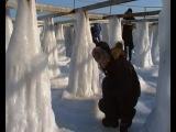 Зима в Аркадии 2012.