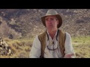 Армâгеддон Животных Лучи Смерти ✤ ANIMAL ARMAGEDDON ✤ ►Дикâя Природâ Фильм◄