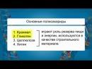 Биология. 10 класс. Урок 9. Углеводы и их роль в жизнедеятельности клетки.